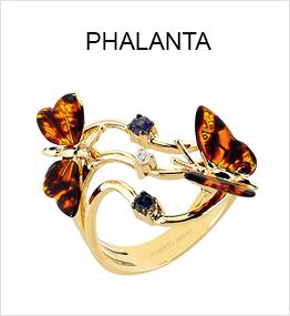 Phalanta
